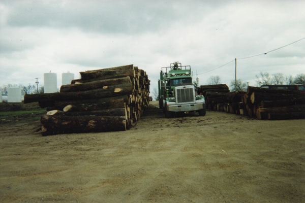 Olson Logging Truck Walnut Logs