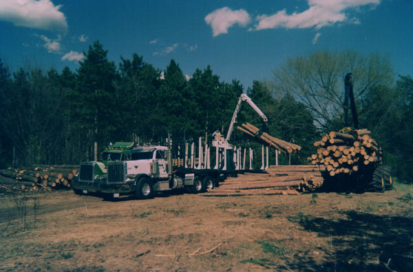 Olson Logging Truck Loading Hardwood Logs