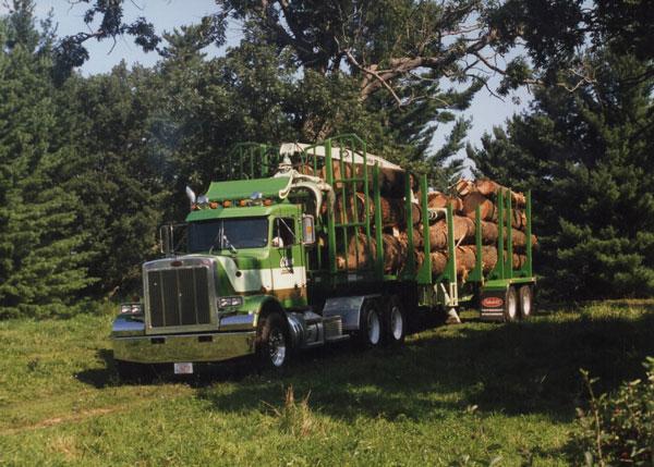 Olson Logging Truck Standing Timber