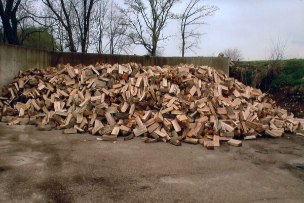 Olson Logging Pile of Firewood